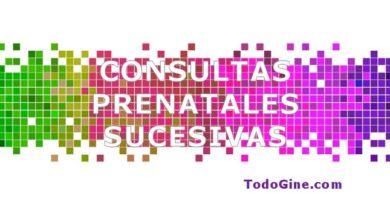 Consultas prenatales sucesivas