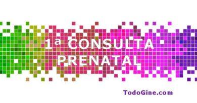 Primera consulta prenatal